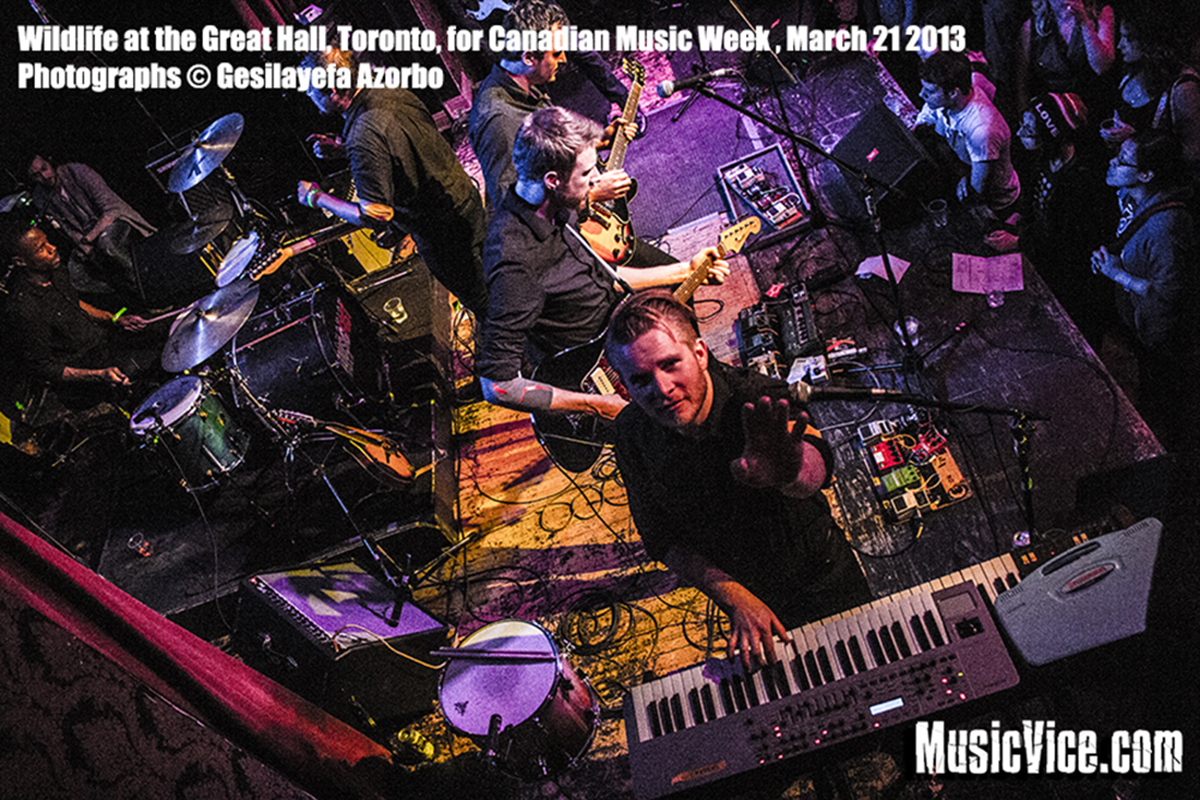 Wildlife at The Great Hall, Toronto [CMW] &#8211; Concert review and photos
